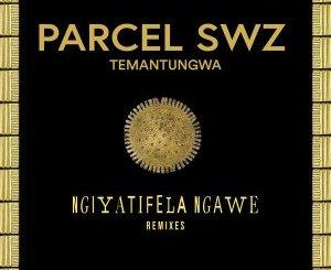 Parcel (SWZ), Temantungwa – Ngiyatifela Ngawe (Remixes)