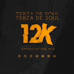 Tebza De SouL – 12k Appreciation Mix