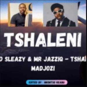 Mellow, Sleazy, Mr JazziQ – Tshaleni ft Sho Madjozi