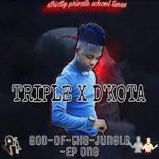 Triple x d'kota – BLUE MOON (main mix)