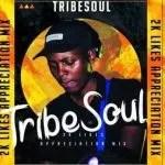 TribeSoul, Bido Vega & Nkulee 501 – Badimo (Amadlozi)