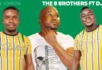 The B Brothers