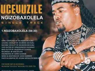Cevuzile Mchunu Ngizobaxolela Mp3 Download