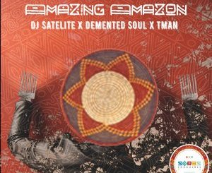 Demented Soul & Tman, DJ Satelite Amazing Amazon (Original Mix) Mp3 Download