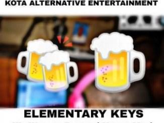 K.A.E & Elementary Keyz We Wanna Partyy Mp3 Download