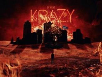 DY Krazy Dy Went Krazy Album Download