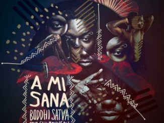 Boddhi Satva feat. Sly Johnson A Mi Sana (Dance With Me) Mp3 Download
