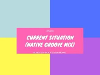 Bongs Da Vick & Kelvin Momo Current Situation (Native Groove Mix) Mp3 Download