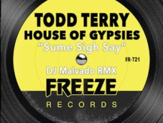 Todd Terry & House Of Gypsies Sume Sigh Say Mp3 Download