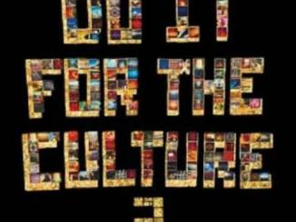 Salaam Remi Do It FoR the CulTuRe Vol. 2 Album Download