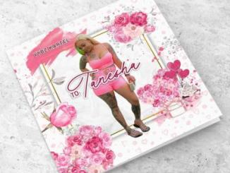 Vybz Kartel To Tanesha Album Download