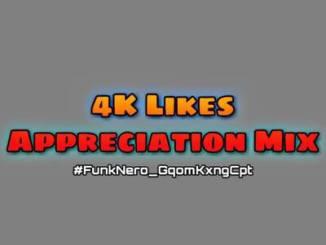 DJ FunkNero 4K Likes Appreciation Mix mp3 Download