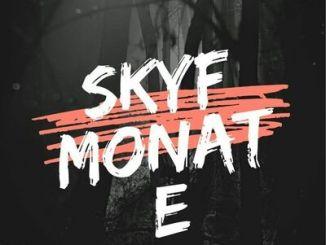 Hurricane Bois Skyf Monate mp3 Download