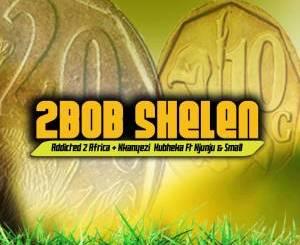 Addicted 2 Africa & Nkanyezi Kubheka Feat. Njunju x Small 2Bob Shelen Mp3 Download