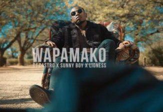 Dj Castro Wapamako Ft. Sunny Boy & Lioness Mp3 Download