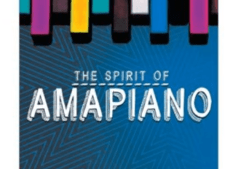 Dj Vigi Amapiano mix 2020 The Spirit of Amapiano Mp3 Download