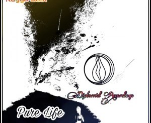 Kaygo Soul Pure Life EP Zip Download