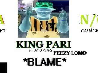 King Pari Blame (Ft. Feezy Lomo) Mp3 Download