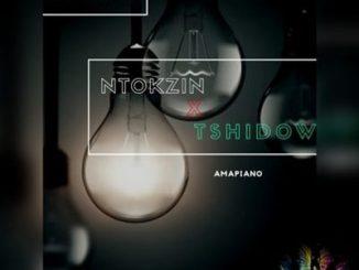 Ntokzin, Tshidiso, Vibe & Dzedze Ama lights (Vocal Mix) Mp3 Download