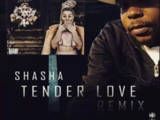 Sha Sha Tender Love (King Matalic SA Remix) Mp3 Download