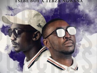 Tsebe Boy and Tebza Ngwana ft Lebo You Bring The Best In Me Mp3 Download