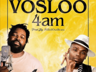 Zulu Government Vosloo 4am Ft. Big Zulu Mp3 Download