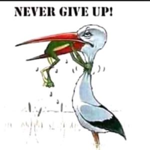 DJ Tamza Never Give Up Mp3 Download