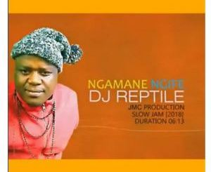 Dj Reptile Ngamane Ngife Mp3 Download