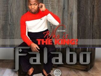 Download Falabo 2020 Songs Free MP3