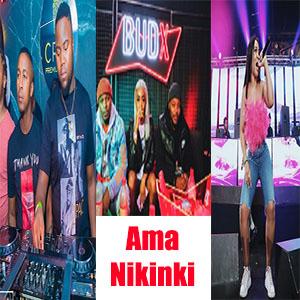 MFR Souls Ft. Kamo Mphela Amanikiniki Amapiano Mp3 Download