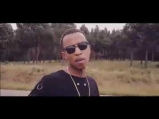 MegaHertz Jozi State of Mind Video Download