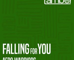 Afro Warriors Falling For You Mp3 Download