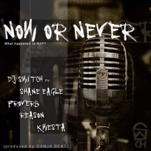 DJ Switch Now Or Never Mp3 Download