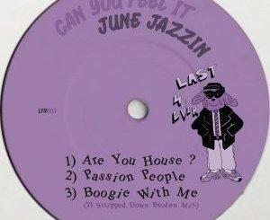 June Jazzin Can You Feel It EP Zip Download