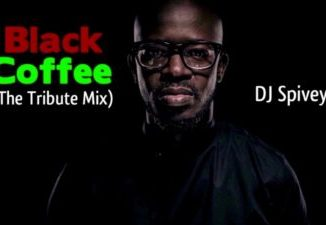 Zakes Bantwini Mixtape Top 10 Mp3 Download Fakaza