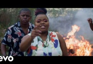 Download Distruction Boyz Ubumnandi Video Fakaza