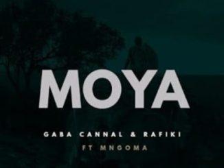 Download Gaba Cannal & Rafiki Moya Mp3 Fakaza