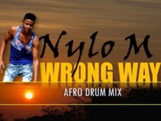 Nylo M Wrong Way Mp3 Download Fakaza
