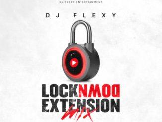 Download Mp3 DJ Flexy LockDown Extension Mix