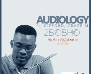 DOWNLOAD Audiology 2Bobho Ft. Gifford & Craze M (Sipho Ngubane Remix) Mp3 Fakaza