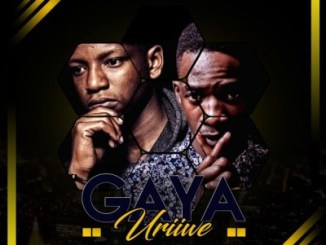 DOWNLOAD Jah Signal & Dj Pressure ZW Gaya Uriwe (Amapiano Mix) Mp3 Fakaza