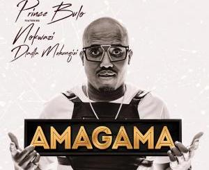 DOWNLOAD Prince Bulu Amagama Ft. Nokwazi & Kyotic (Felo Le Tee Remix) Mp3 Fakaza