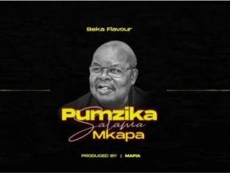 Beka Flavour Pumzika Salama Mkapa Mp3 Download Fakaza