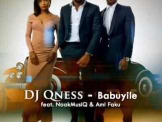 Download DJ Qness Babuyile Ft. NaakMusiQ & Ami Faku mp3 Fakaza