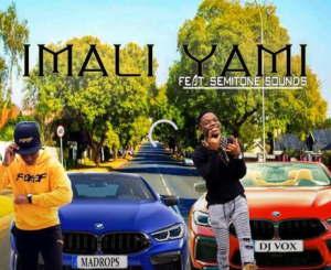 DJ Vox & Madrops Imali Yami Mp3 Fakaza Download