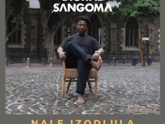 DOWNLOAD Digital Sangoma Nale Izodlula Mp3 Fakaza