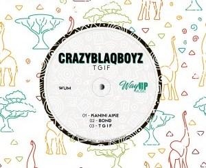DOWNLOAD CrazyBlaqBoyz T.G.I.F EP Zip Fakaza