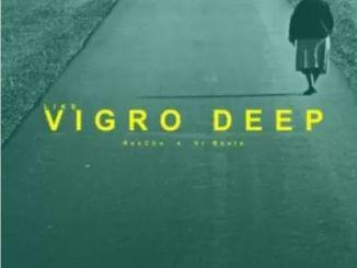 DOWNLOAD ReeCho Like Vigro Deep Ft. VR Beats Mp3 Fakaza