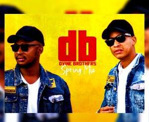 Dvine Brothers Spring Mix 2020 Mp3 Download Fakaza