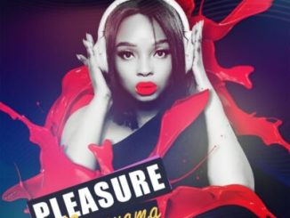 Pleasure Ngonyama Mp3 Download Fakaza